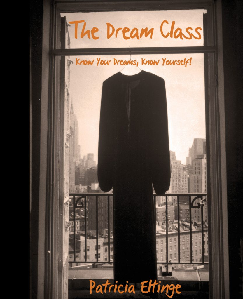 The Dream Class by Patricia Eltinge